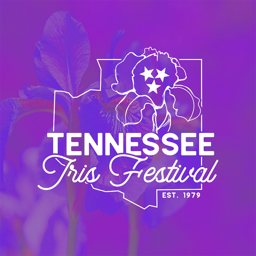 iris festival logo cmyk 2col