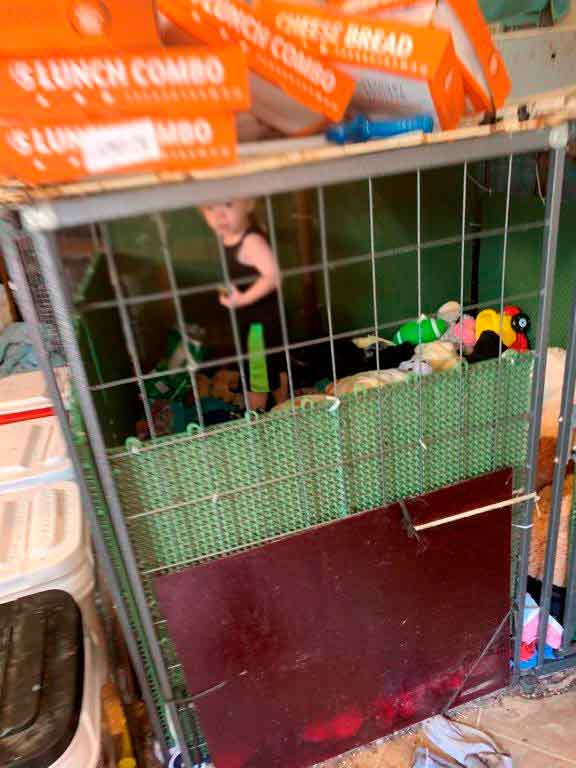A 1.5-year old child was found in a cage (face intentionally blurred). He was adjacent to boxes of snakes.